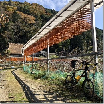 串柿の里四郷神野地区